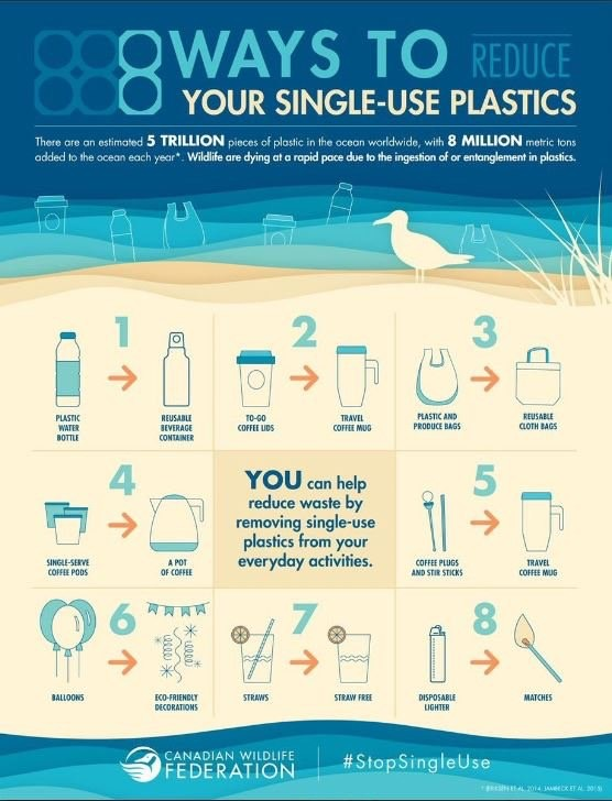 Reduce Plastic Consumption During Lent!
