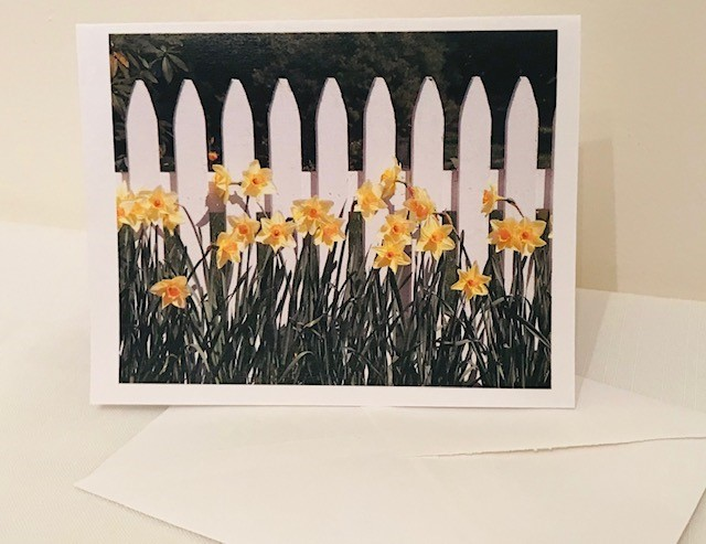 Note Cards | White Picket Fence | Set of 12 | 4.25